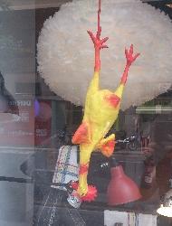 Pollastre penjat a una botiga de llums