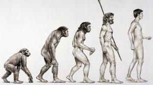 Evolucion-humana_TINIMA20140117_0113_18